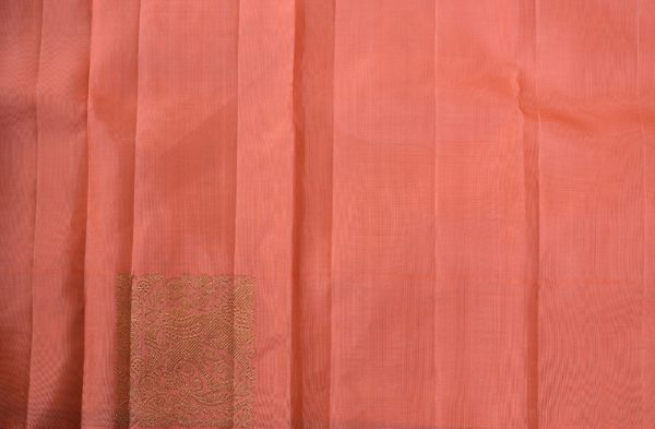 Cream long border kanchi silk saree 2
