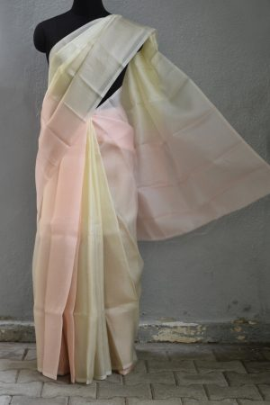 Beige cream shaded organza saree 1