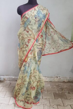 Pale green chiffon saree with red kanchipuram pleats border