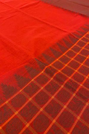 Red kanchi cotton half and half saree 1