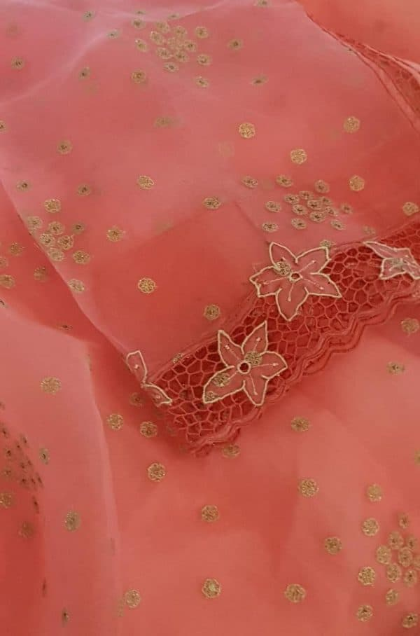 Pinkish peach organza and embroidered cutwork saree1