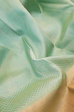 Sea green kanchipuram silk saree