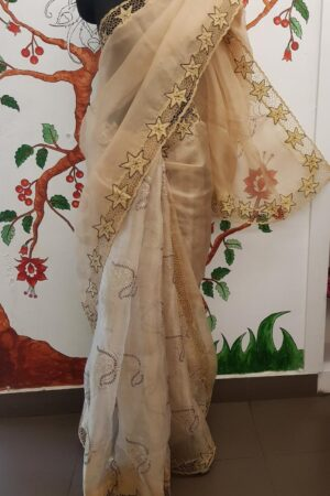 beige organza and tisssue embroidered cutwork saree2