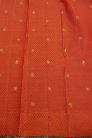 Arakku kanchipuram silk saree with paymadi border2