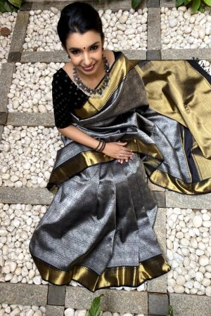 Black kanchipuram silk saree with silver body and gold border
