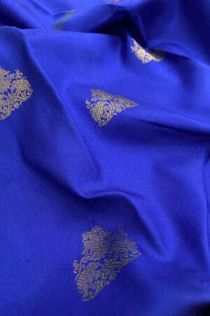 Blue with pink border kanchipuram silk saree1