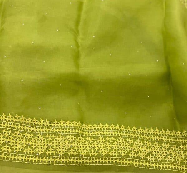 Green organza kutch work saree border