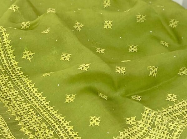 Green organza kutch work saree border1
