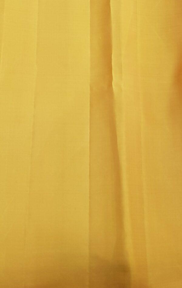 Grey kanchipuram silk saree with thread buttis4