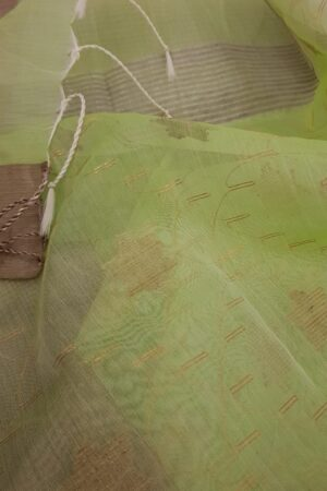 Mint green organza saree2