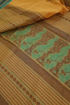 Mustard kanchi cotton saree1