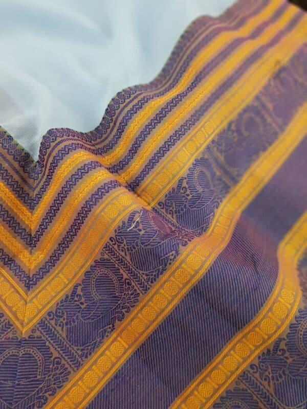 Pale blue chiffon saree with kanchi cotton border2