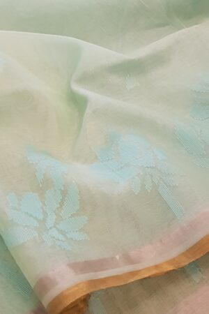 Powder blue Organza saree2