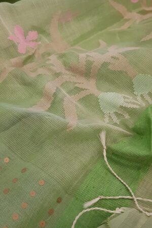 green organza with sequence border1