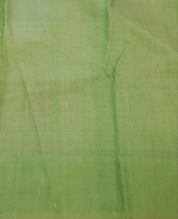 green organza with sequence border3