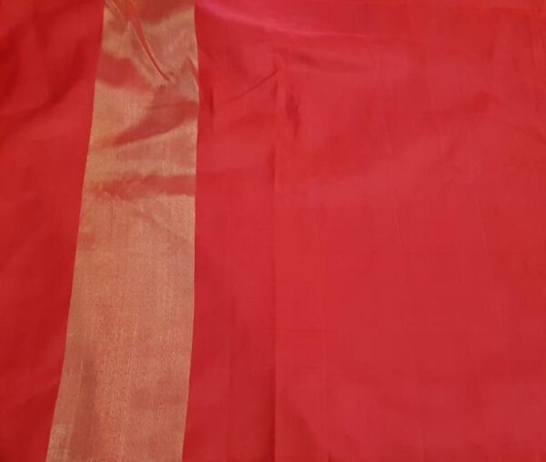 Dark beige chiffon saree with benaras silk border5