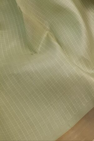 Pista green kanchipuram silk saree1
