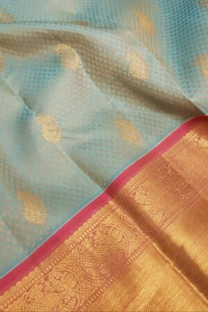 Pale blue kanchipuram silk saree with jacquard design1