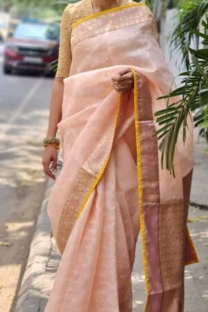 peach organza saree with kutch work and silk border and pallu