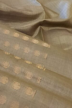 iced mocha with button tussar saree1